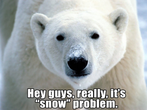 snowproblem